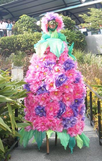 stilt flower
